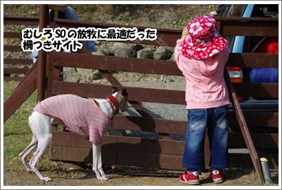 20140520_12.jpg