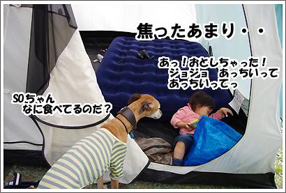 20140520_6.jpg