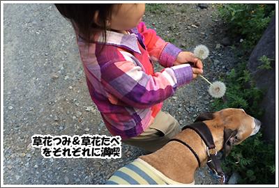 20140520_9.jpg