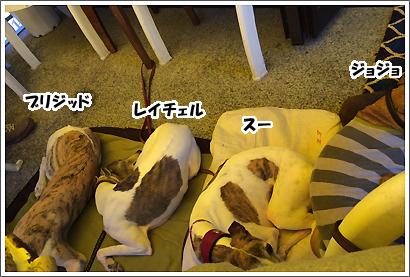 20140531_26.jpg