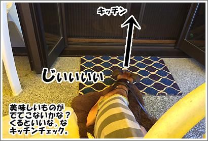 20140531_27_1.jpg