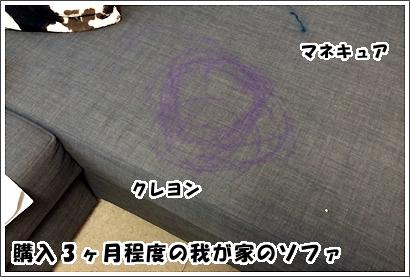 20140605_14_1.jpg