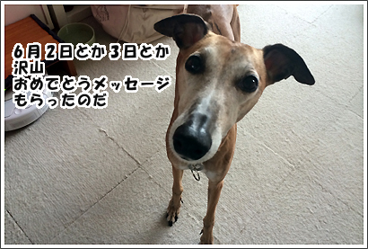 20140605_3_1.jpg