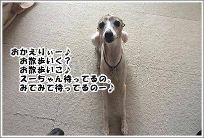 20140605_7_1.jpg