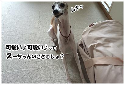 20140610_5.jpg