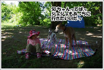 20140611_12.jpg