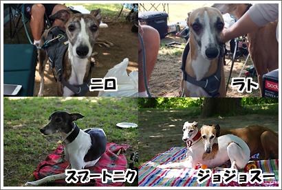 20140611_4.jpg