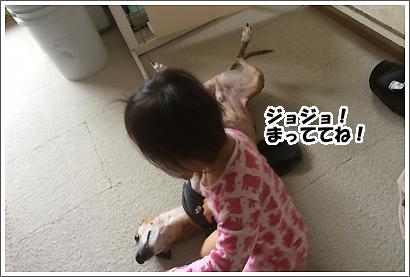 20140623_19.jpg