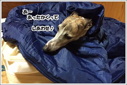 20140627_15.jpg