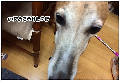 20140627_19.jpg