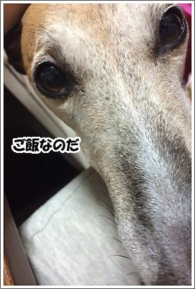 20140707_17.jpg