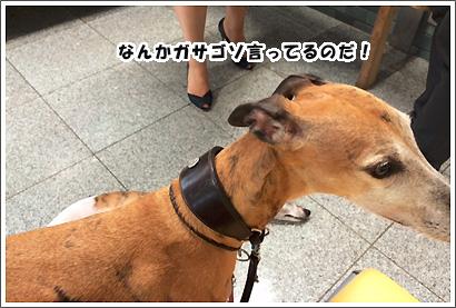 20140707_19.jpg