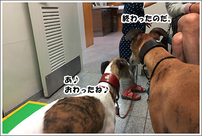 20140707_36.jpg