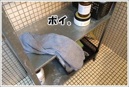 20140715_21.jpg