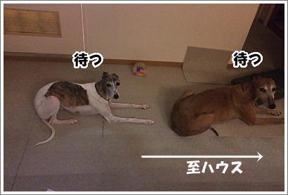 20140721_20
