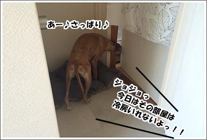 20140721_8.jpg