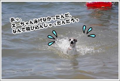 20140728_38_1.jpg