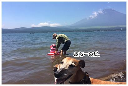20140728_65_1.jpg