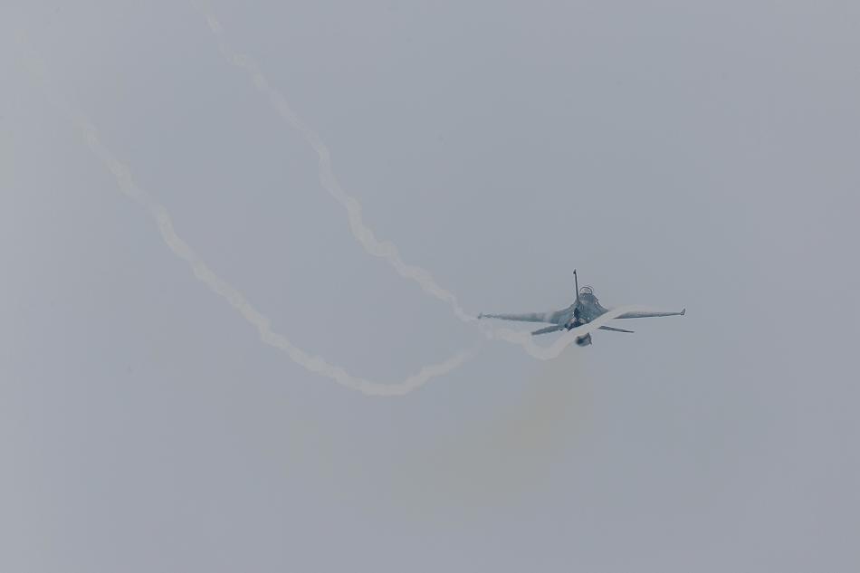 大トリミングF-2-12