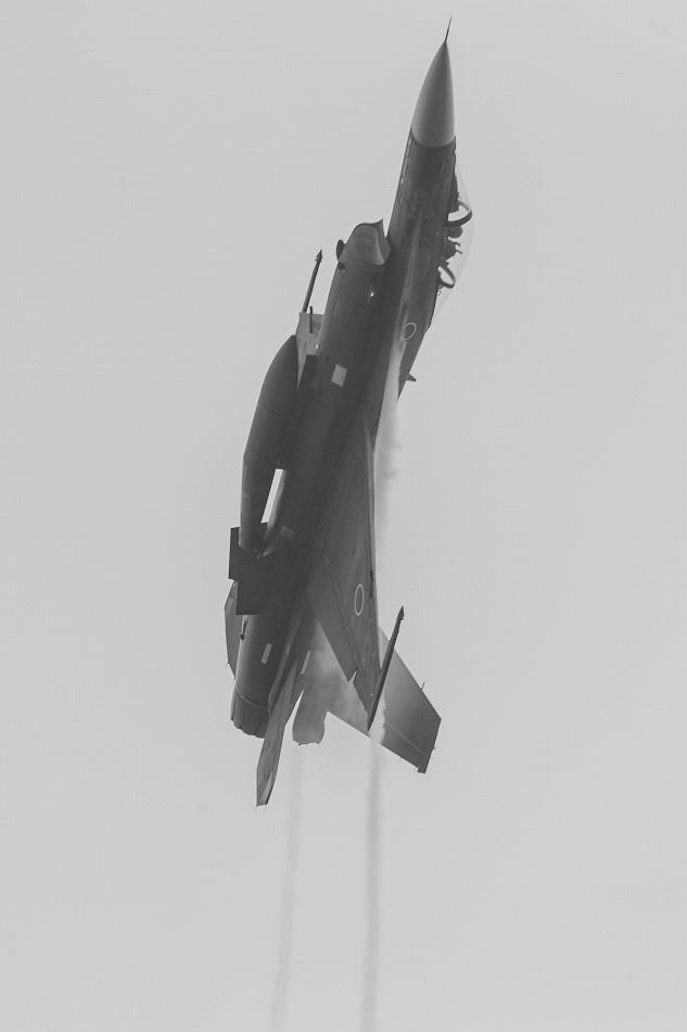 大トリミングF-2-10