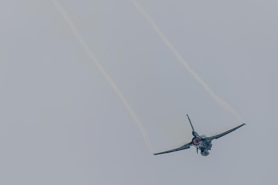 大トリミングF-2-11