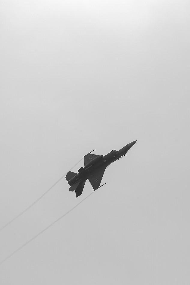 大トリミングF-2-6