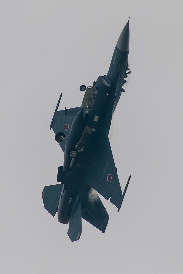 大トリミングF-2-5