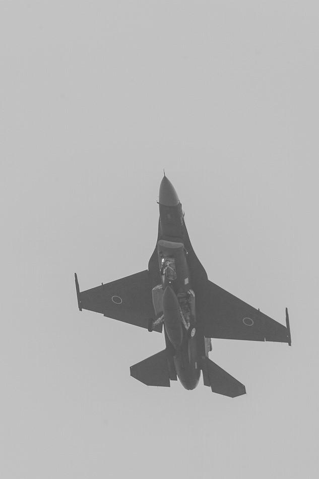 大トリミングF-2-3