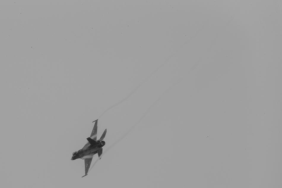 大トリミングF-2-1