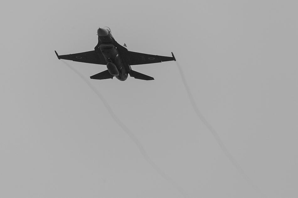 大トリミングF-2-2