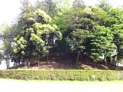 難波田城公園20140503_06