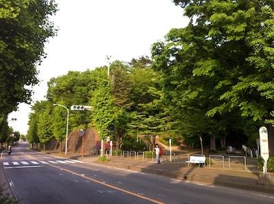 難波田城公園20140503_13