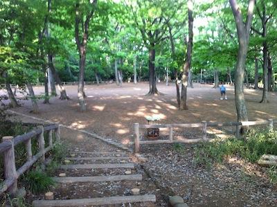 難波田城公園20140503_22