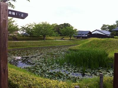 難波田城公園20140503_30