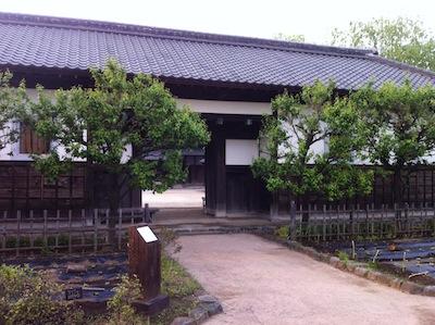 難波田城公園20140503_35