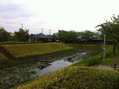 難波田城公園20140503_38