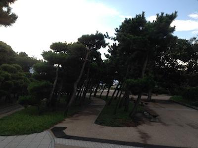 三浦半島一周20140823_11