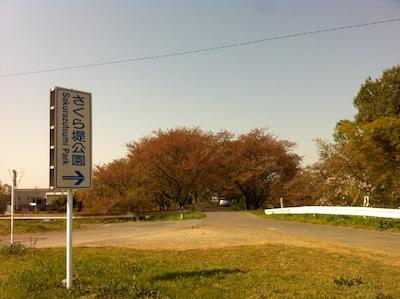 荒川さくら堤公園・川幅日本一20140415_1