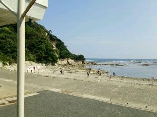 海中公園 磯遊び