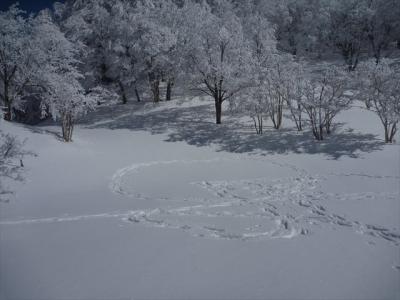 2014-02-11-053.jpg