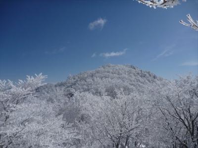 2014-02-11-054.jpg