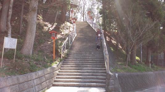 桜 浅間公園 ショートカット