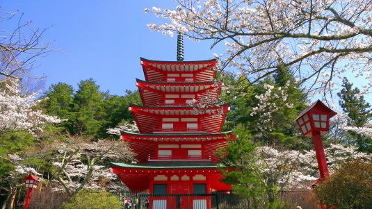 桜 浅間公園 忠霊塔