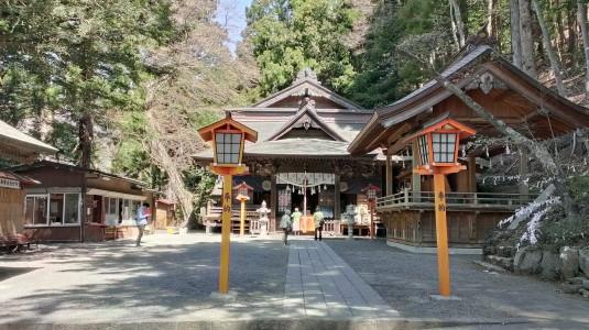 桜 浅間公園 神社