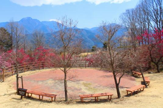 富士川クラフトパーク 梅 展望台