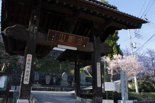 桜 宝寿院 門