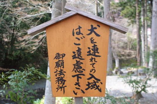 桜 身延山 御廟所 入城