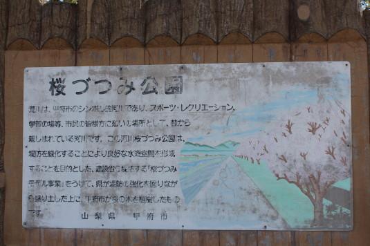 桜 荒川下流 看板