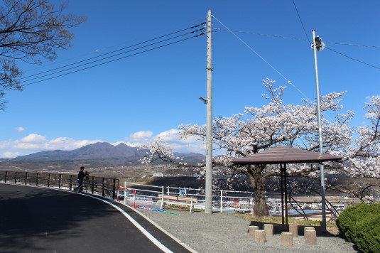 桜 平和観音 駐車スペース