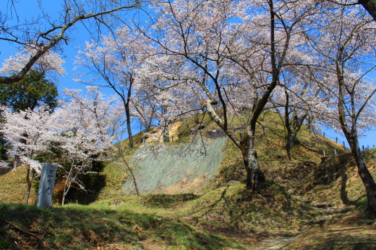 桜 勝山城跡 三の丸